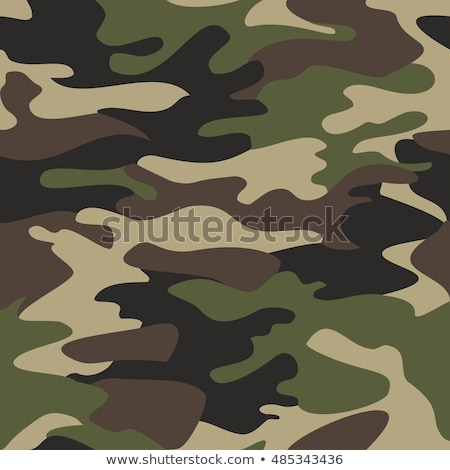 background camouflage colors green leaves stock photo © Karamio