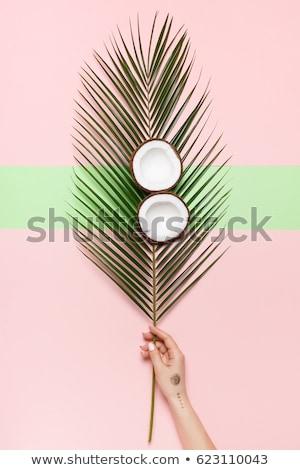 женщины рук кокосового изолированный белый фон Сток-фото © deandrobot