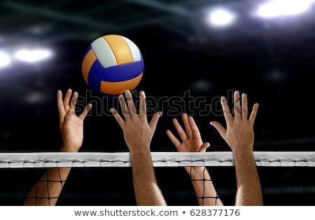 Volleybal Blauw Geel kleur witte leuk Stockfoto © bluering