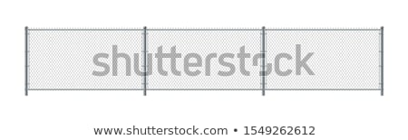 Chain Fence. Steel grid isolated on white Stock photo © kayros