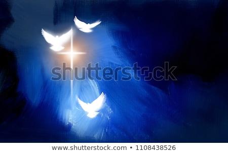 Izzó kék galamb repülés fekete otthon Stock fotó © blackmoon979