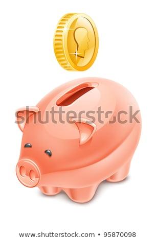 Piggy bank money box standing on gold coin Stock photo © djmilic