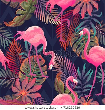 Zomer paradijs ontwerp flamingo palmboom tropische Stockfoto © cienpies