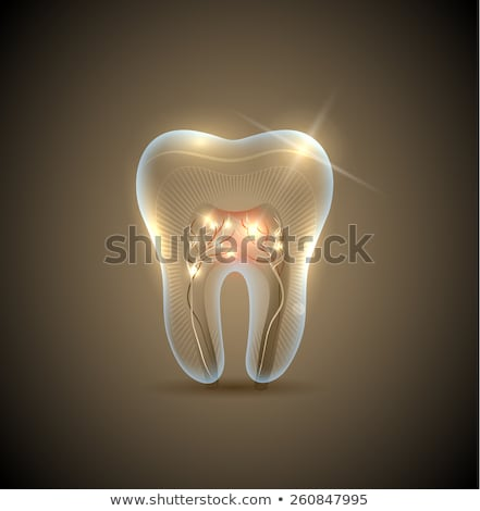 beautiful golden transparent tooth with roots illustration stock photo © tefi