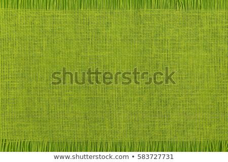 fringed green table runner Stock photo © Digifoodstock