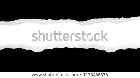 Siyah yırtık kağıt şablon dizayn kart beyaz Stok fotoğraf © fresh_5265954