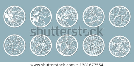 желудь круга икона природы объект дерево Сток-фото © Anna_leni