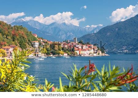 Town of Malcesine on Lago di Garda skyline view Stock photo © xbrchx