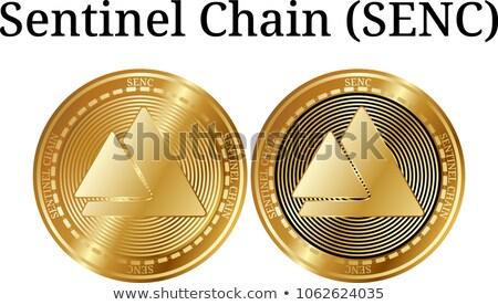 Sentinela vetor assinar ícone virtual moeda Foto stock © tashatuvango