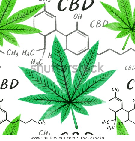 Moleculair structuur bladeren groene bladeren geïsoleerd Stockfoto © robuart