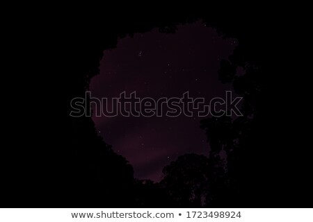 Grotte sombre nuit illustration nature lune Photo stock © bluering