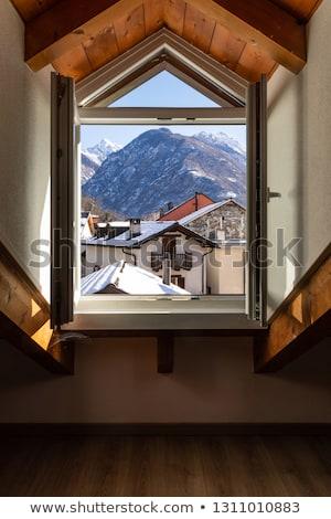 fenêtre · montagnes · hiver · isolé · blanche · intérieur - photo stock © Lady-Luck