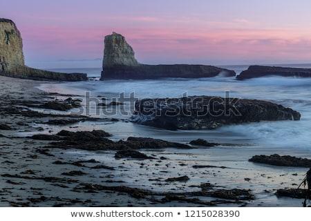 Schemering vier strand boerderij park Stockfoto © yhelfman