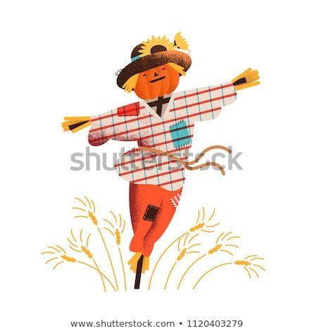 страшно Cartoon зерновых иллюстрация чаши глядя Сток-фото © cthoman