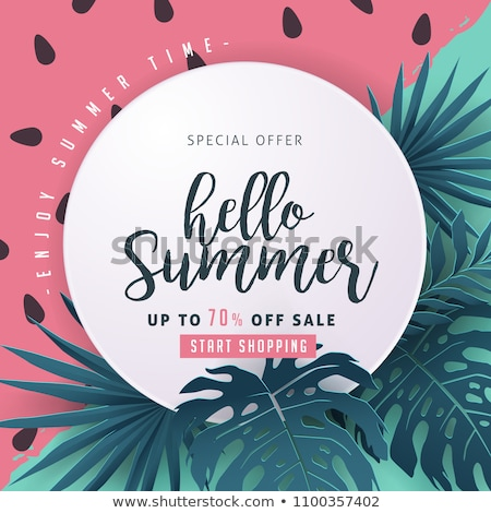 Summer Watermelon Discount Vector Illustration Stock photo © robuart