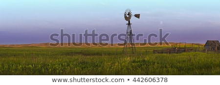 Scene with house and windmills Stock photo © colematt