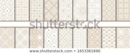 Szett elegáns textil tapéta végtelen minta virágok Stock fotó © MarySan