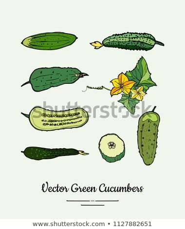 Doğal gıda korunmuş meyve logo malzemeler Stok fotoğraf © robuart