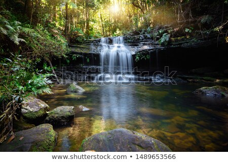 Bushland waterfall and oasis Stock photo © lovleah