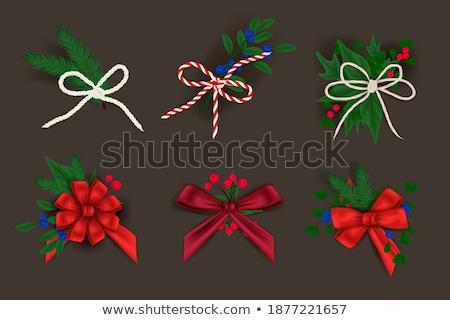 Ribbon Bows Made of Red Satin Set of Knots Vector Stock photo © robuart