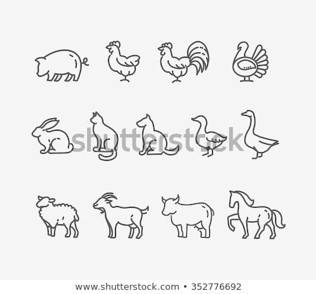 Farm animals collection - line design style icons set Stock photo © Decorwithme