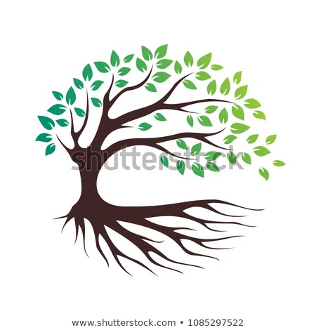 Abstract groene boom sterke plant wortels silhouet Stockfoto © designer_things