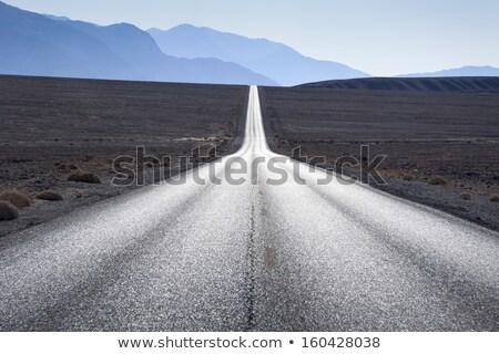 Perspektywy asfalt drogowego horyzoncie ulicy prędkości Zdjęcia stock © SArts