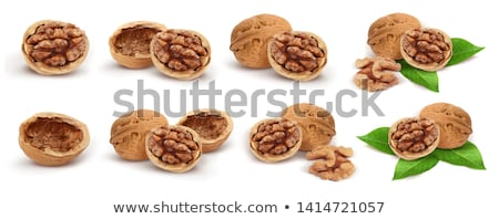 Wallnut shell Stock photo © vtorous