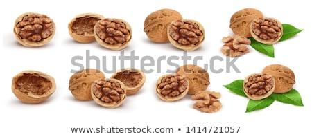 Сток-фото: Wallnut Shell