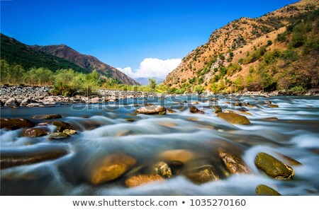 água doce córrego natureza pedra rio Foto stock © goce