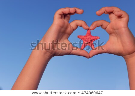 Young girl holding a starfish on the beach Stock photo © photography33