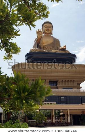 dourado · buda · templo · telhado · ver · edifício - foto stock © zmkstudio