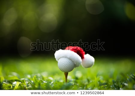 Natal golfe neve homem golfe Foto stock © andreasberheide