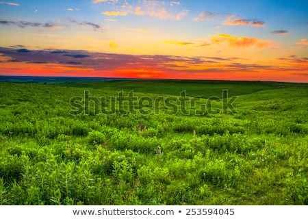 Wygaśnięcia preria Colorado fort Zdjęcia stock © PixelsAway