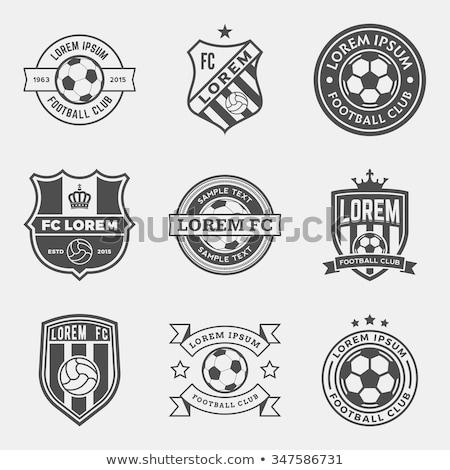 soccer badge stock photo © marinini