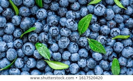 blueberry closeup stock photo © tiero