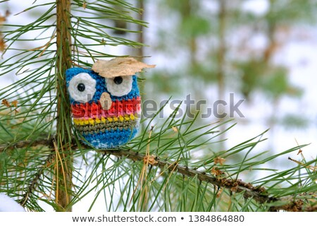 Soft toy owl is placed in autumn forest Stock photo © franky242