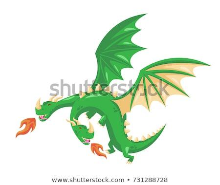 Magisch draak vliegen hemel bergen leven Stockfoto © carodi