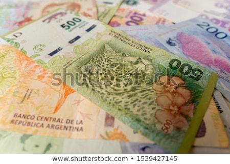 Különböző bankjegyek Argentína asztal pénz utazás Stock fotó © CaptureLight