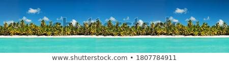 coastline  dominicana Stock photo © lkpro