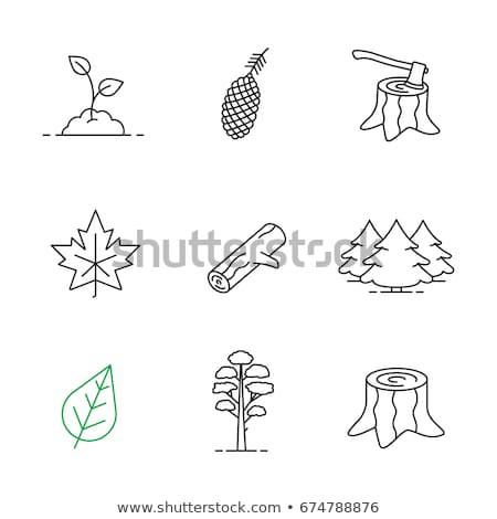 Deforestation line icon. Stock photo © RAStudio