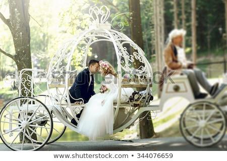 bride and groom white horse love wedding romance stock photo © studiostoks