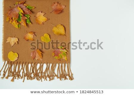 hecho · a · mano · de · punto · bufanda · verde · lana · invierno - foto stock © studiotrebuchet