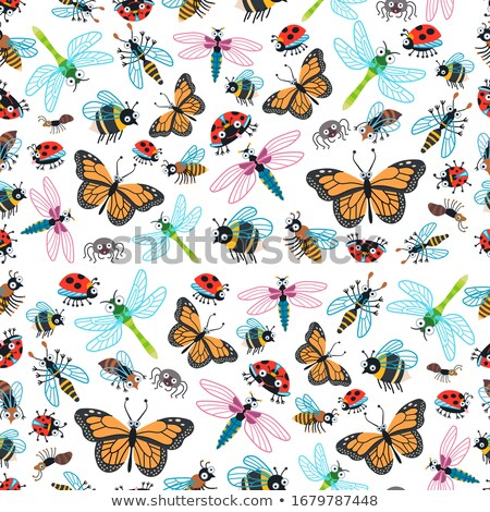 Card template with beetles and dragonflies Stock photo © bluering