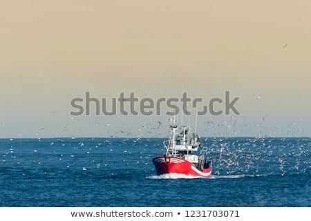 twee · boten · Blauw · rij · rivier · wal - stockfoto © is2