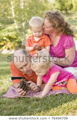 отец · дочь · говорить · соснового · конус · парка - Сток-фото © feverpitch