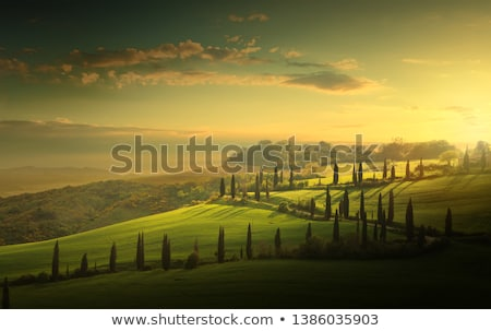 italy tuscany countryside farm land and country road rolling stock photo © konstanttin