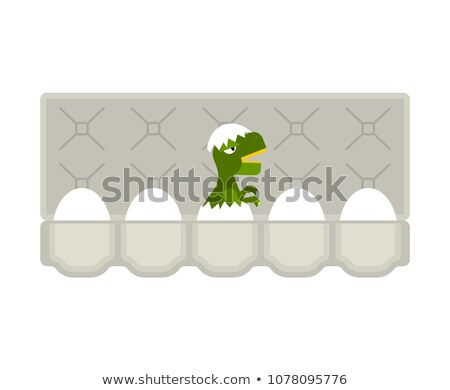 Packing eggs hatched dragon isolated. Vector illustration Stock photo © popaukropa