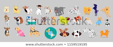 Desenho animado jack russell terrier banho ilustração água Foto stock © cthoman