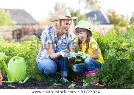 Mutter Tochter arbeiten Garten Pflanzung Sämling Stock foto © studiostoks